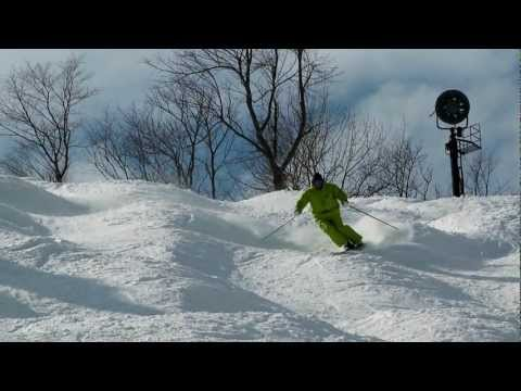 PSIA-AASI Go With A Pro: Dolphin Turns for Advanced Bump Skiing