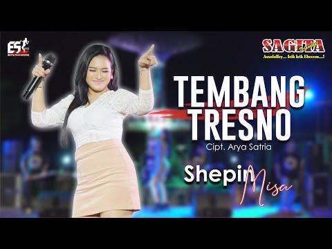 Download Lagu Shepin Misa Tembang Tresno Mp3