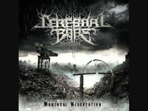 Top 10 Brutal-Technical Death Metal Slams Pt. 1