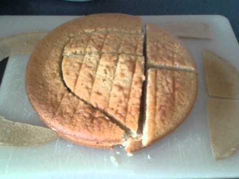 How to make a Stegasaurus Dinosaur cake