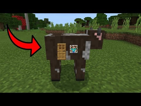 How To Live Inside a Cow in Minecraft Pocket Edition