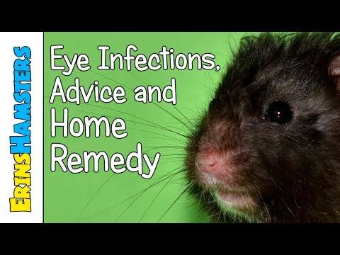EYE INFECTIONS | Advice + Home Remedy