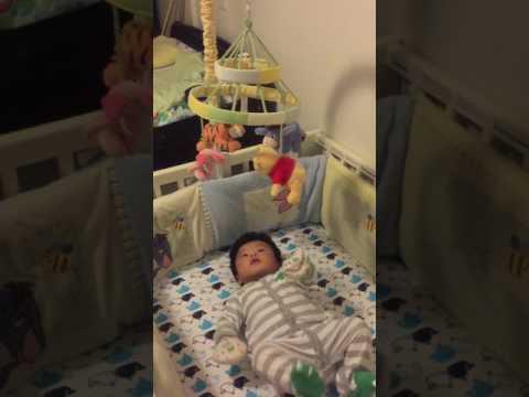 Teddy New baby crib mobile