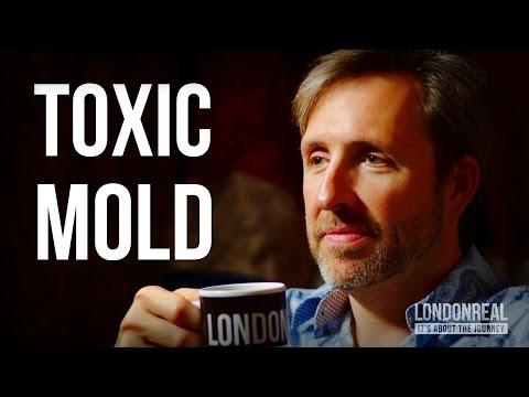 TOXIC MOLD POISONING - Dave Asprey