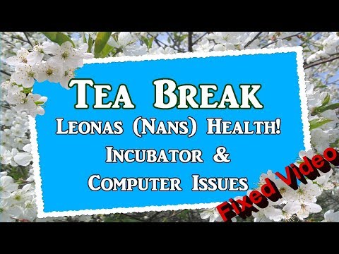 Nans Health, Computer & Incubator Issues (FIXED Video)