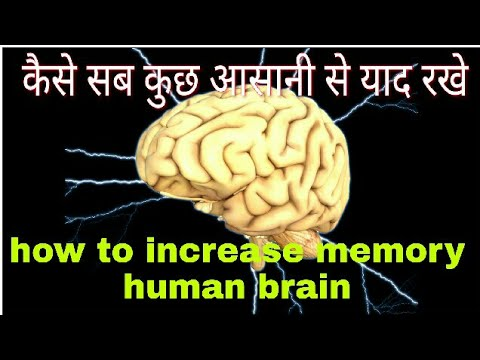 How to increase memory power of brain naturally in hindi , brain exercise for improve  concentration
