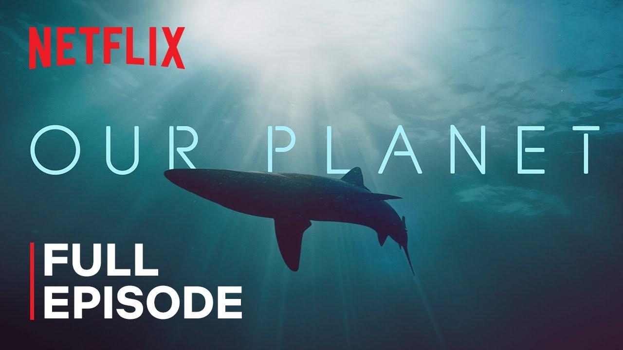 Our Planet   Coastal Seas   FULL EPISODE   Netflix