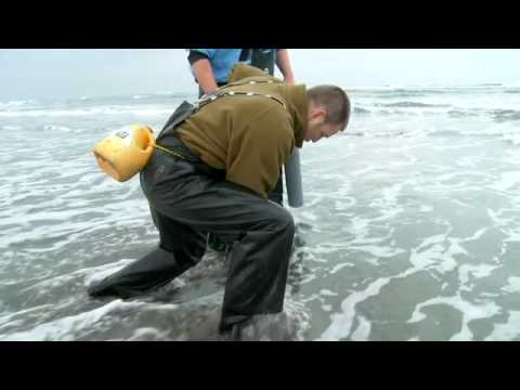 Grant's Getaways: Razor Clamming