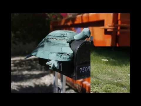 Creative Mailbox Designs