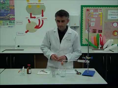 Core Practical: Investigating the effect of enzyme concentration on the initial rate of reaction