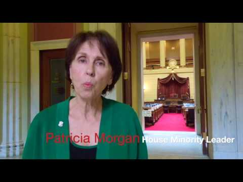 Patricia Morgan 3 - RI House GOP on car tax,  CAD system and disability pensions