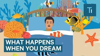 What Happens To Your Brain When You Dream
