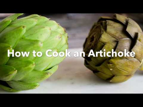 How to Cook a Fresh Artichoke