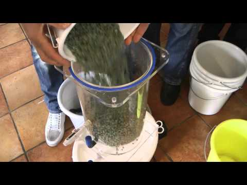 Homemade vinegar: How to make high quality vinegar at home?