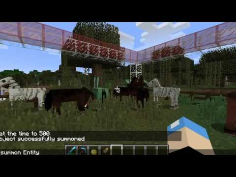 How to Get an Skelly/Zombie horse and Minecraft! (Tamed and Wild)