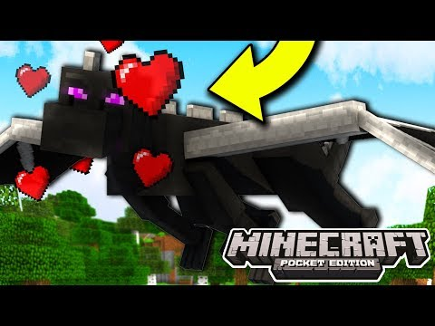 How To TAME THE ENDERDRAGON IN MINECRAFT! (Minecraft Pocket Edition)