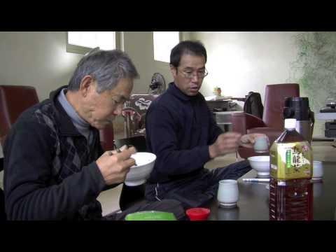 Shofukan - Senshin-an: building a Japanese tea house (2012)