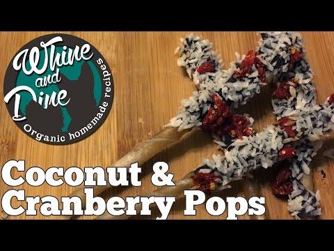 Coconut and Cranberry Sticks | Homemade Christmas Dog Pops
