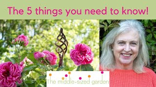 Climbing plants - how to choose the right climber for your garden!