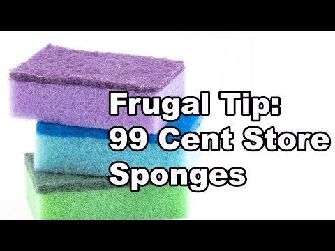 $99 Cent Store Sponges - Sponge Worthy