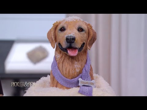 This Isn't A Real Dog - It's A Cake! - Pickler & Ben