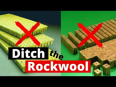 Easy Hydroponics / Why I don't use Rockwool