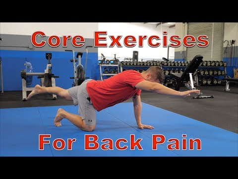 FIVE Best Core Exercises for Back Pain (Protects Spine!)
