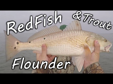GREAT DAY on Galveston Bay! Redfish, Flounder & Trout