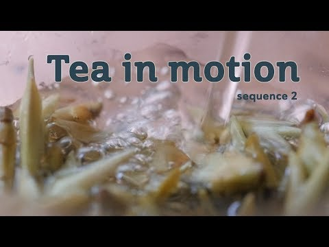 Tea in Motion - The Beauty of Brewing (sequence 2)