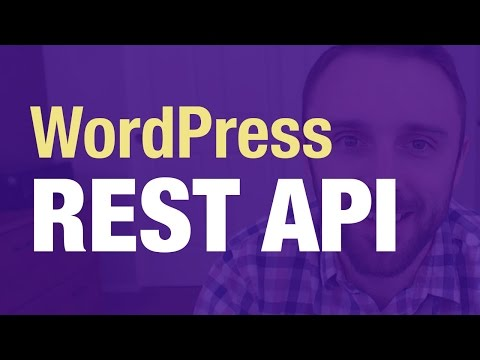 WordPress REST API Tutorial (Real Examples)