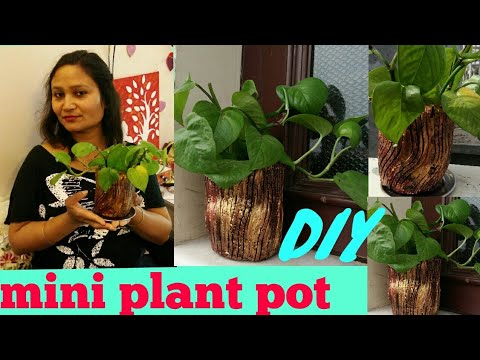 DIY ideas,do it yourself,mini plant pot diy,anvesha,s creativity