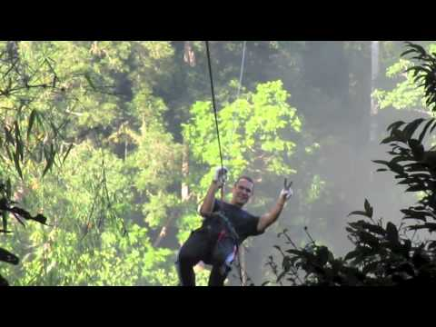 Jauntaroo's Chief World Explorer job application