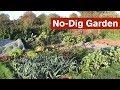 No-Dig Garden Introduction