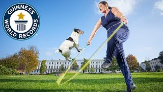 Jacob and Jessica: Record breaking Jack Russells - Meet The Record Barkers
