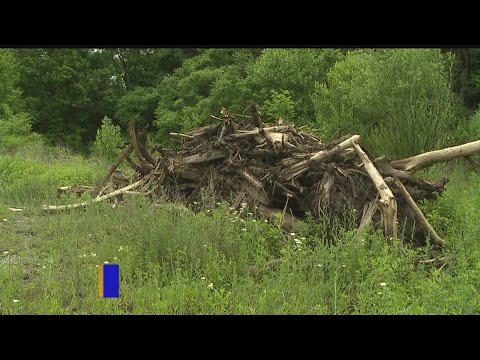 Youngstown man says garbage being dumped on his property