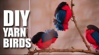 How to make DIY Fun Wooly Birds