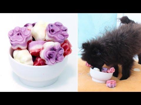 Frozen Yogurt Dog Treats | Memorial Day Dog Treats | Strawberry and Blueberry Dog Treats | RECIPE