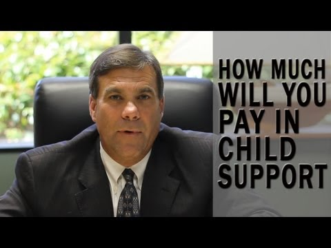 How much will I pay in child support?