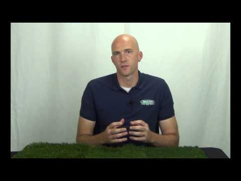 HG Searches – Artificial Grass Installation Cost