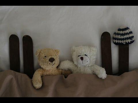 Teddy bears go skiing by sleeper train