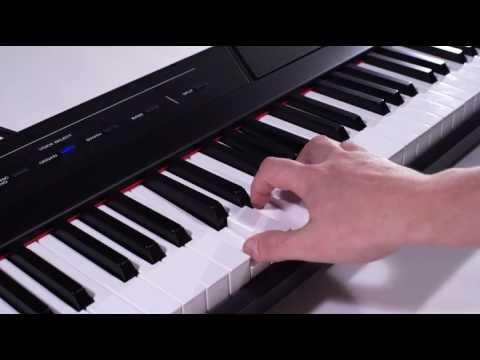 Best Beginner Digital Piano Alesis Recital 88-Key