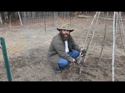 How To Build A Teepee Trellis