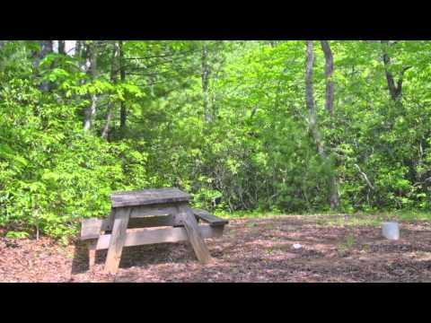 The Adventure Village, Brevard, North Carolina -Real Estate Brevard