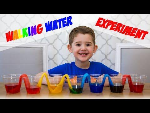 Walking Water Experiment - Rainbow Walking Water - Science Fair Project Ideas