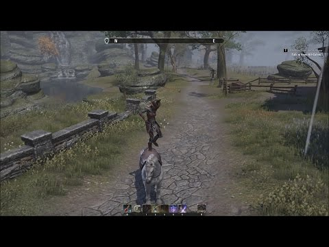 The Elder Scrolls Online - Dance Glitch