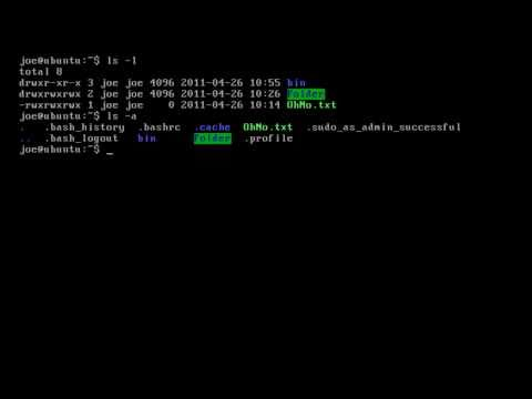Customising the Linux terminal using .bashrc (environment variables and aliases)!