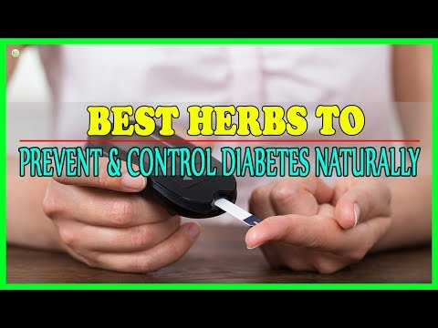 Best Herbs To Prevent And Control Diabetes Naturally | Best Home Remedies
