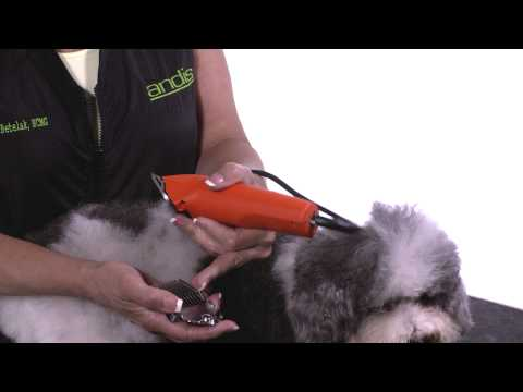 How To Use Attachment Combs - How to Groom Dogs with Andis