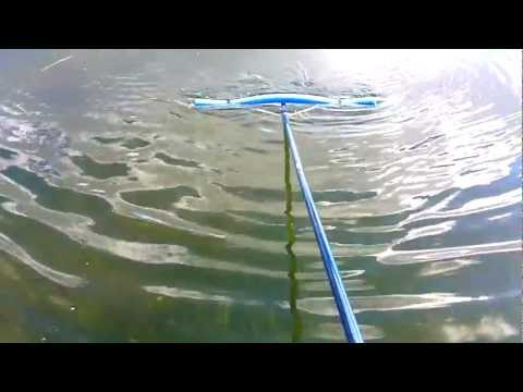 how to do ALGAE REMOVAL FROM A POND - skimming rake