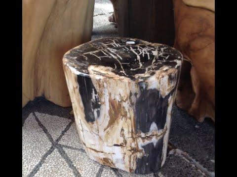 Outdoor Tree Stump Table